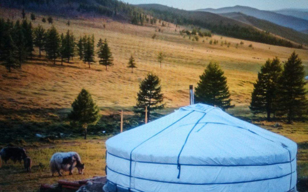 UNA LAMPARA EN EL CAMINO- MONGOLIA